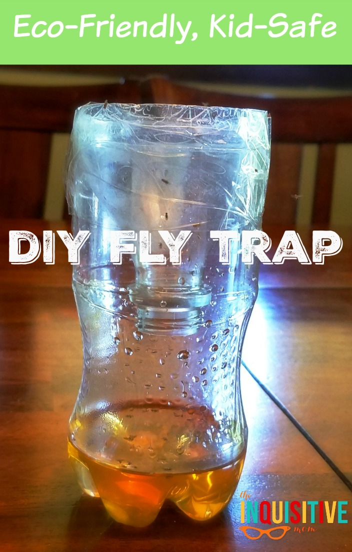 Eco Friendly Diy Fly Trap The Inquisitive Mom